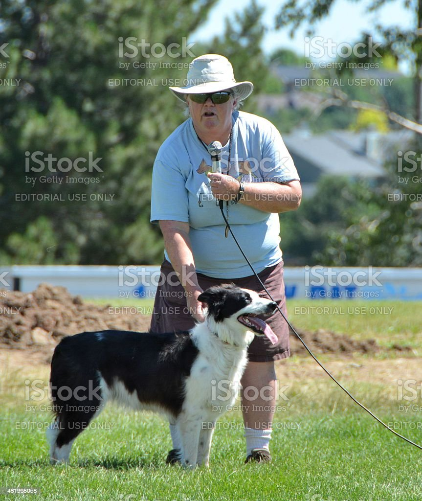 Woman and sheepherding dog. stock photo