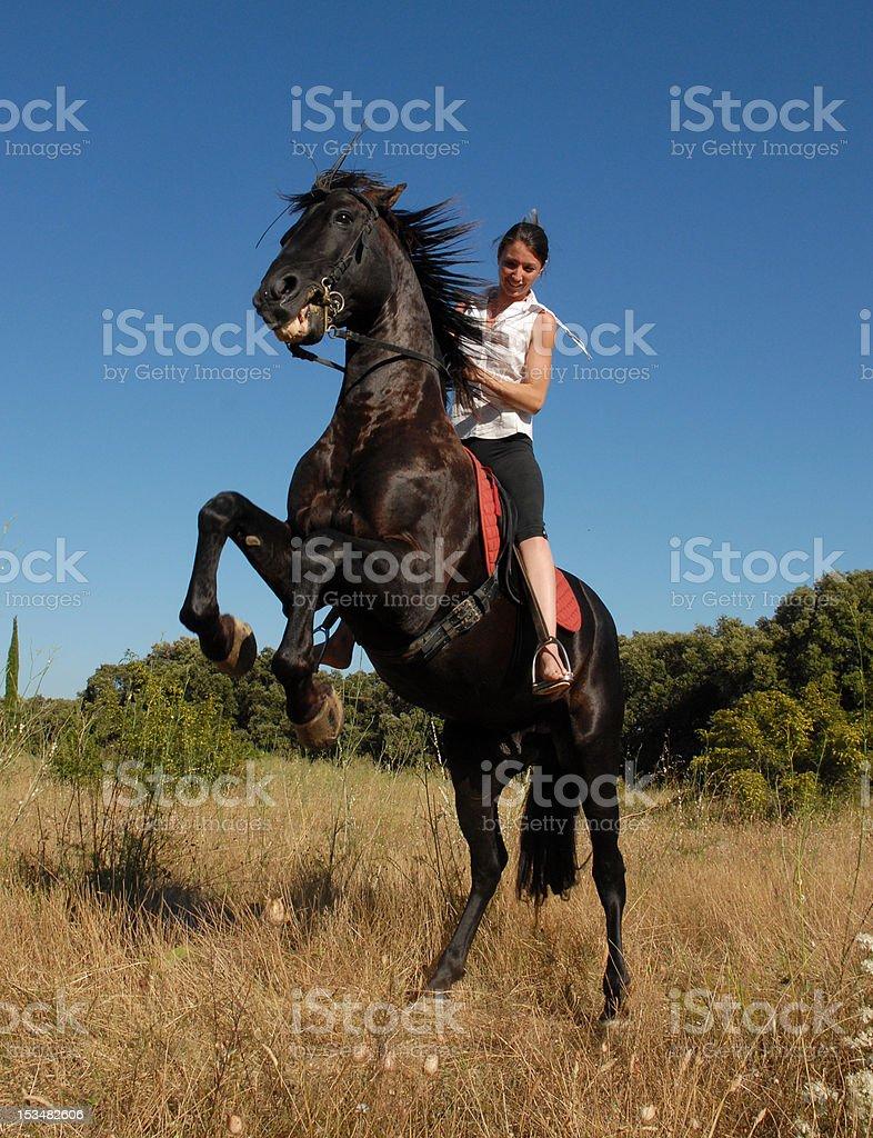 woman and wild stallion stock photo