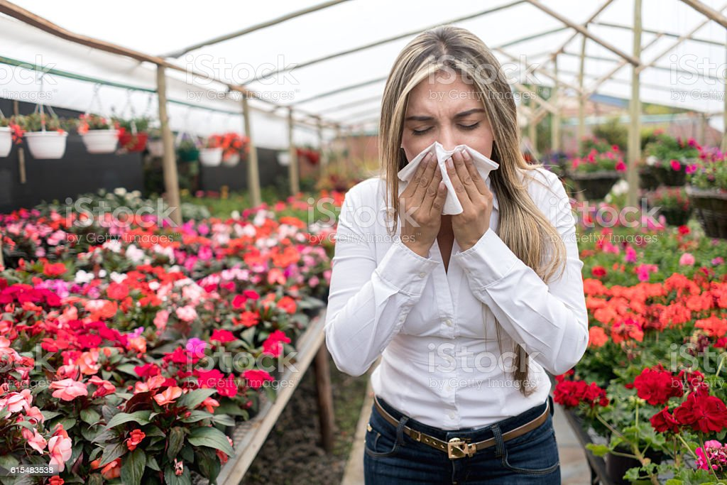 Woman at a greenhouse suffering from hay fever stock photo