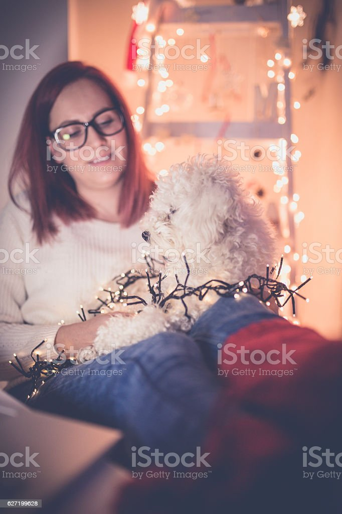 Woman at home with dog on her knees. stock photo