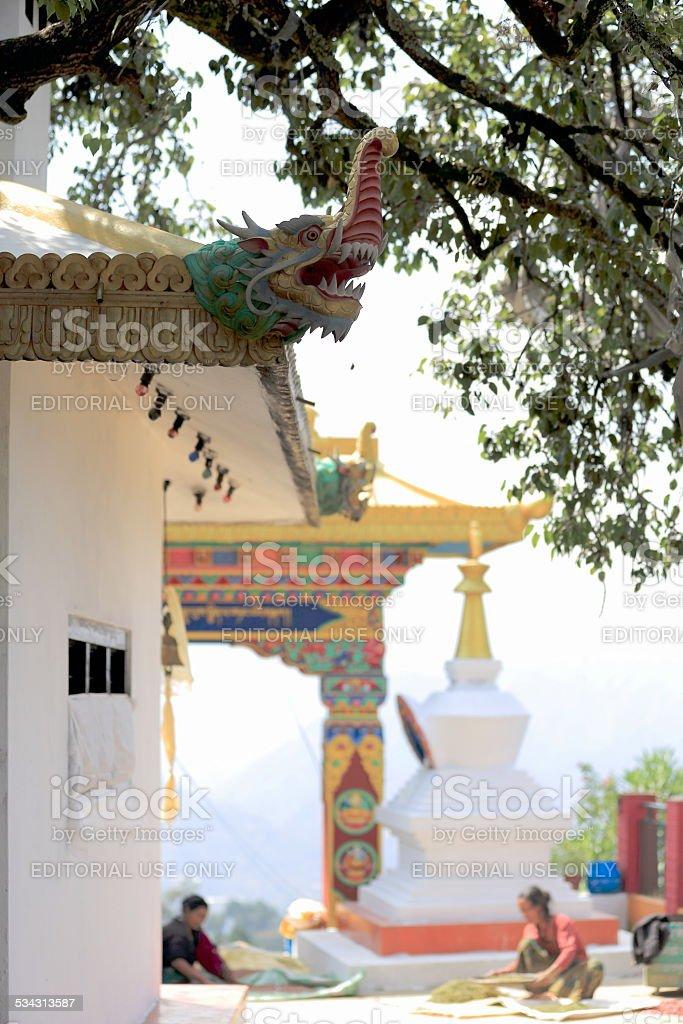 Woman at work. Thrangu Tashi Yangtse monastery-Nepal. 1000 stock photo