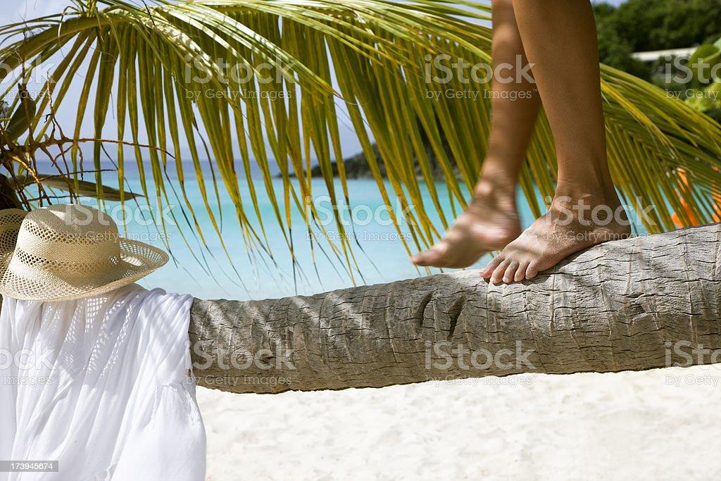 woman balancing on palm tree royalty-free stock photo