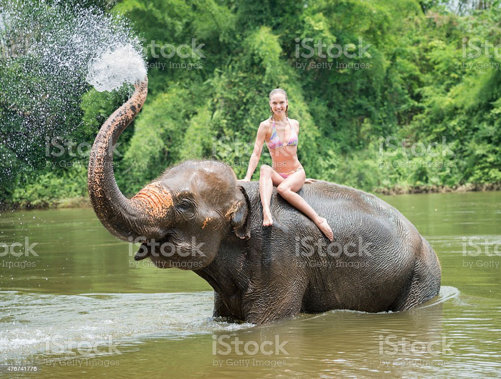 Woman bathing with an Elephant stock photo