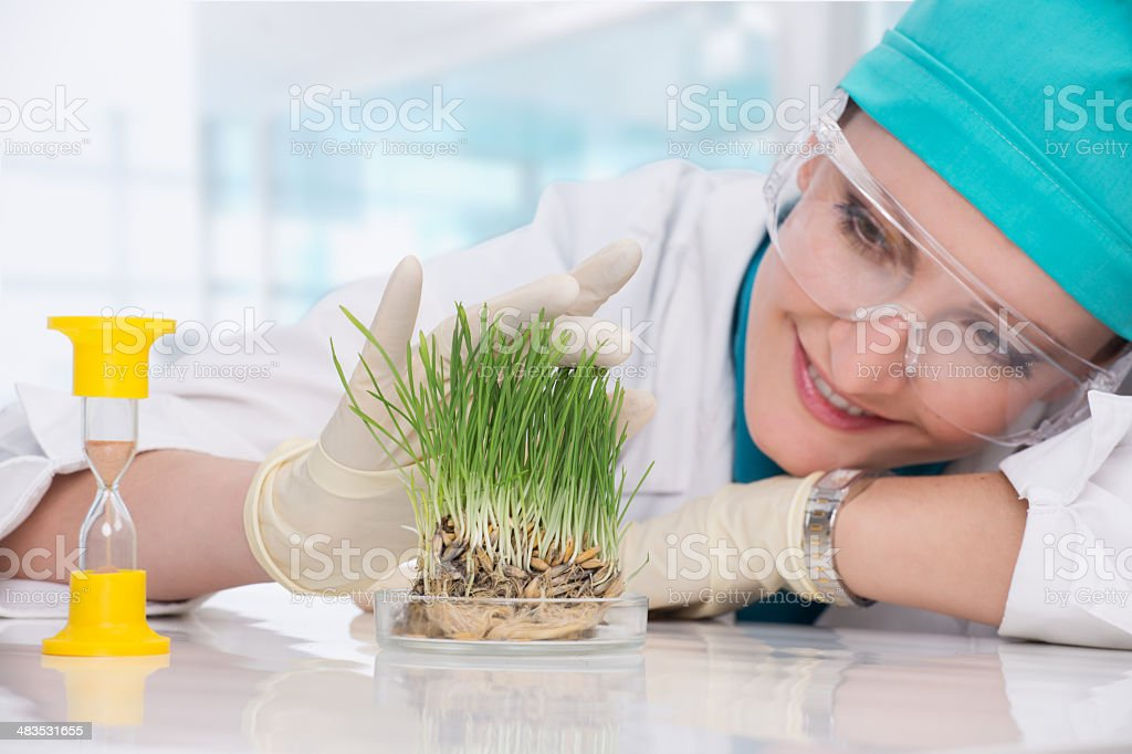 woman biologist stock photo