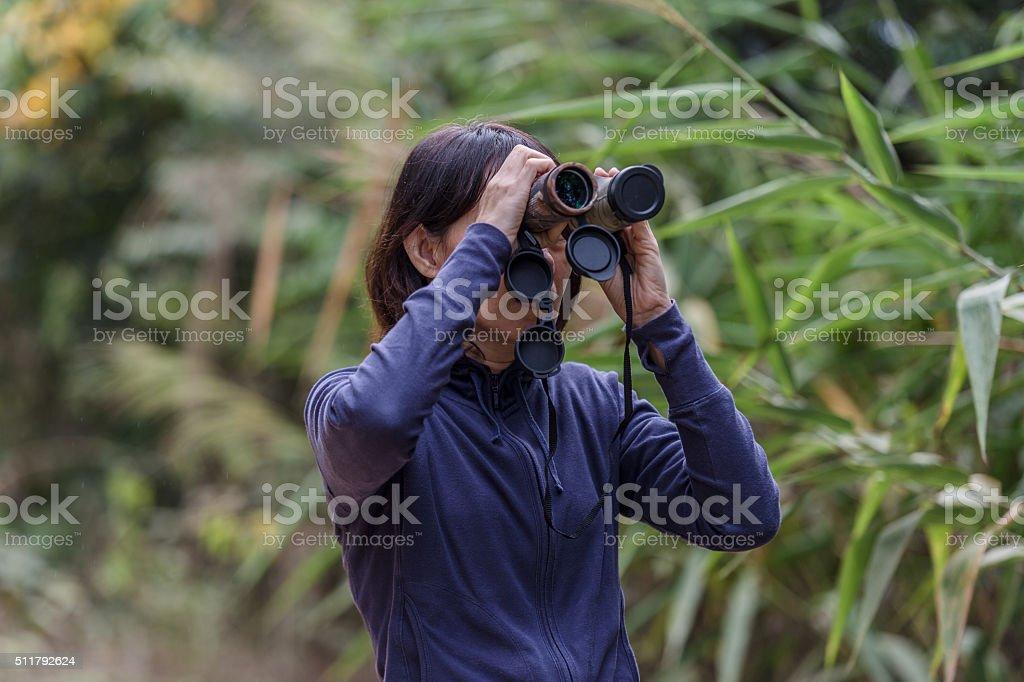 woman birdwatching stock photo