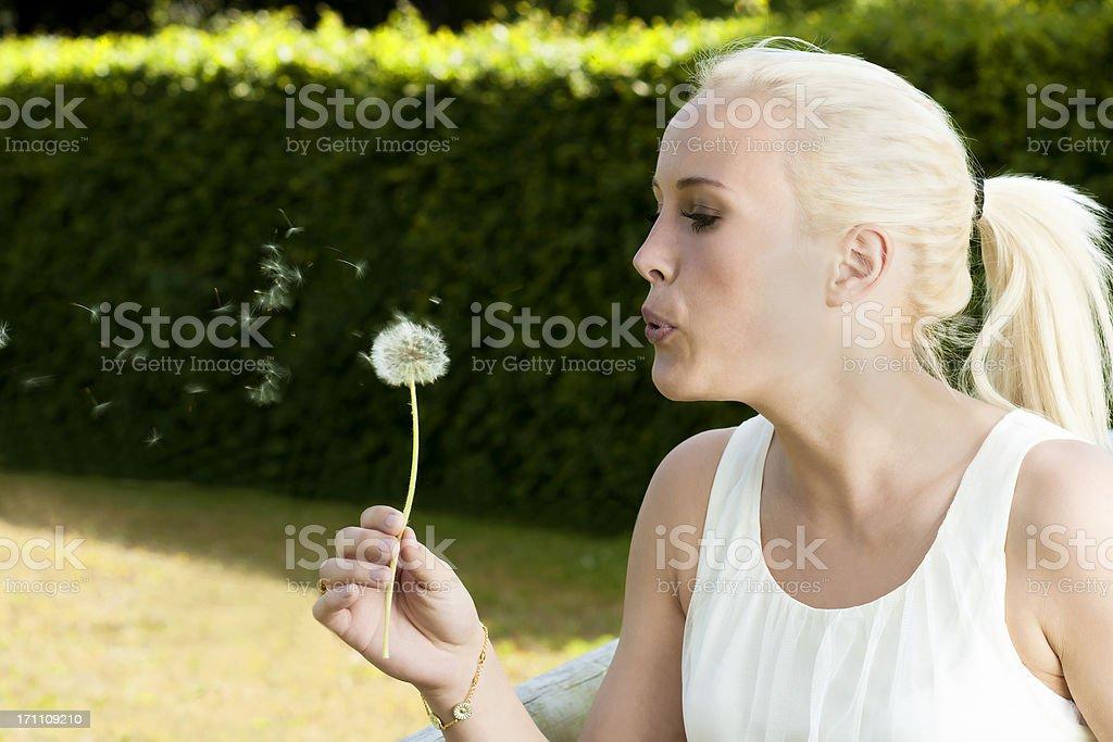 Woman blows air at a dandelion stock photo