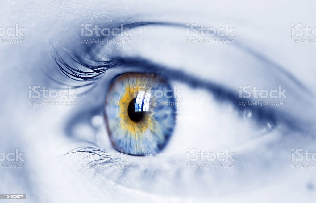 woman blue eye royalty-free stock photo