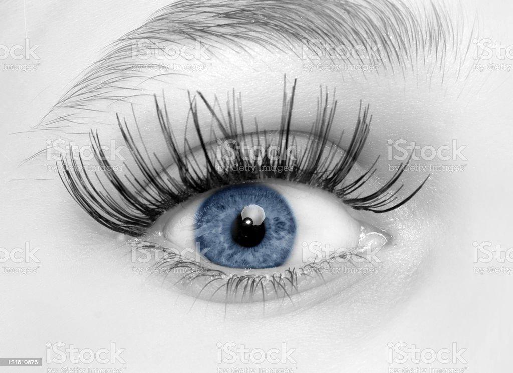 woman blue eye royalty-free stock photo
