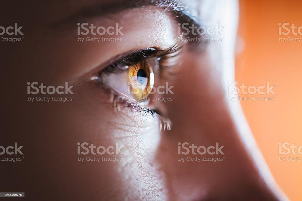 Woman brown eye stock photo