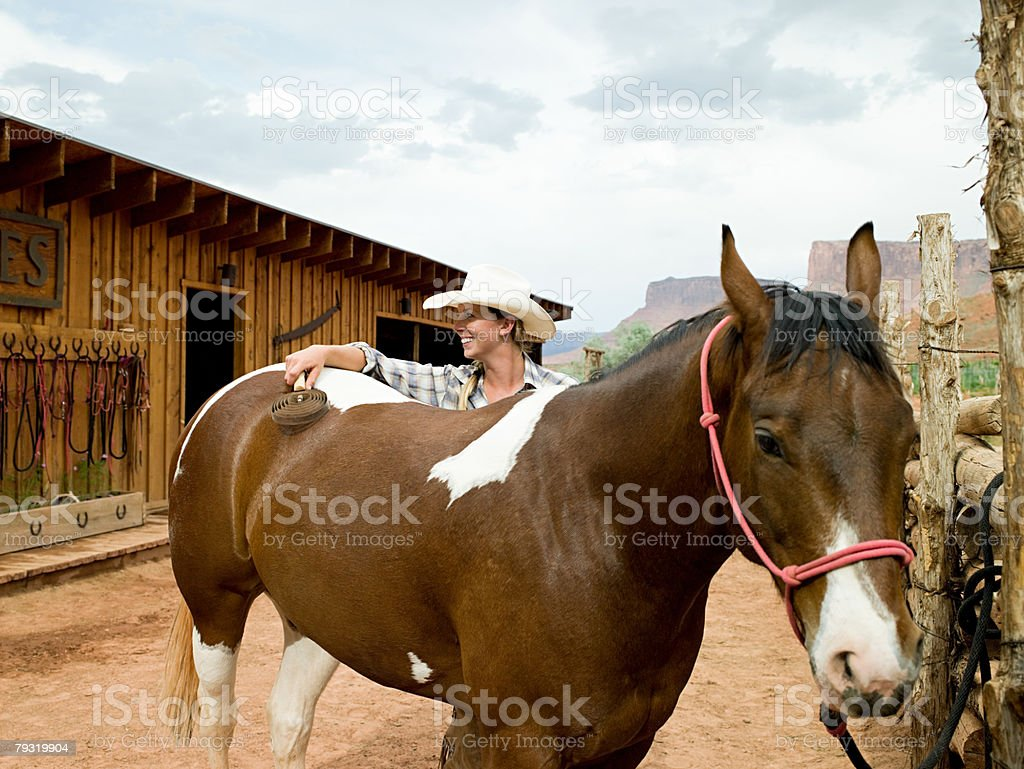 Woman brushing horse royalty-free stock photo