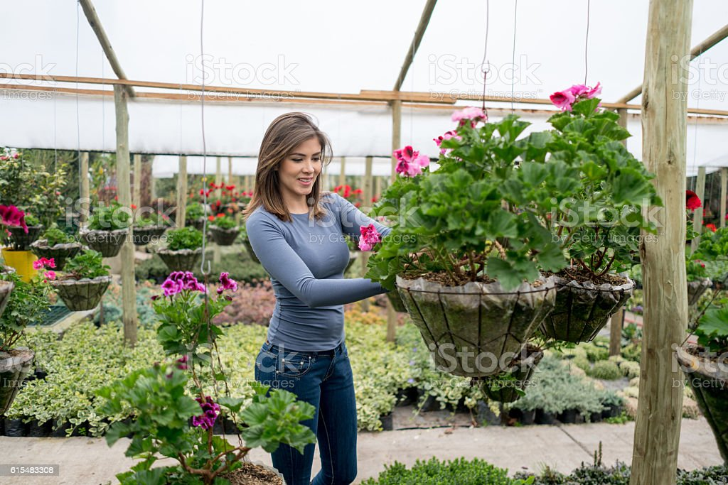 Woman buying flowers at a greenhouse stock photo
