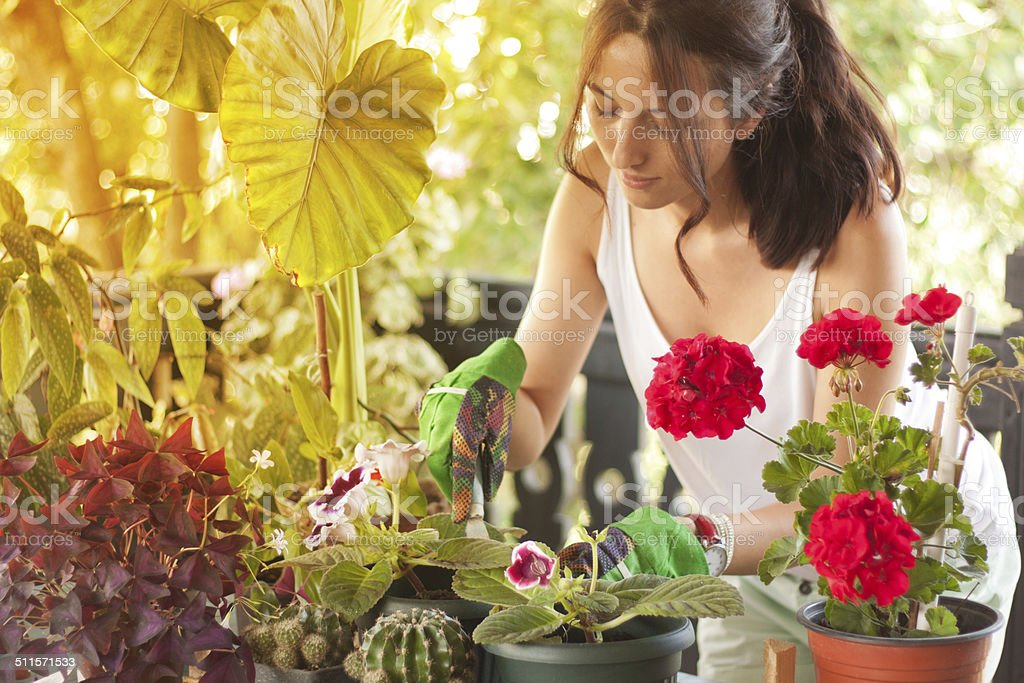 Woman caring about flowers stock photo
