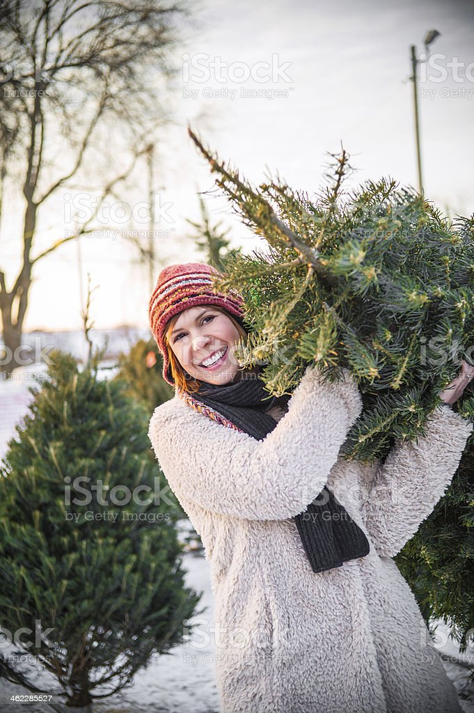 woman carrying christmas tree royalty-free stock photo