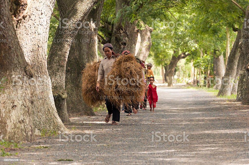 Woman carrying shoulder yoke stock photo