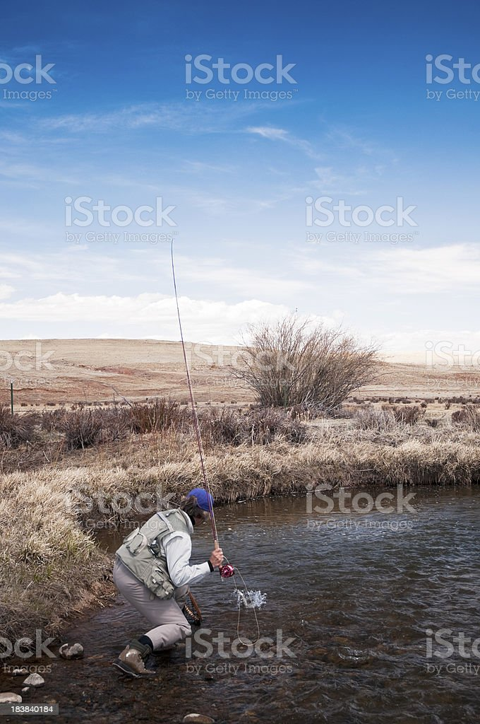 Woman Catching a Trout stock photo
