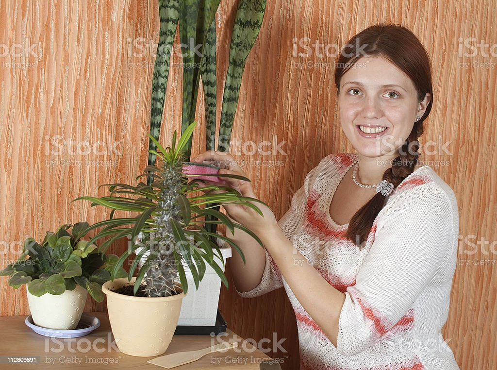 woman cleaning flowers royalty-free stock photo