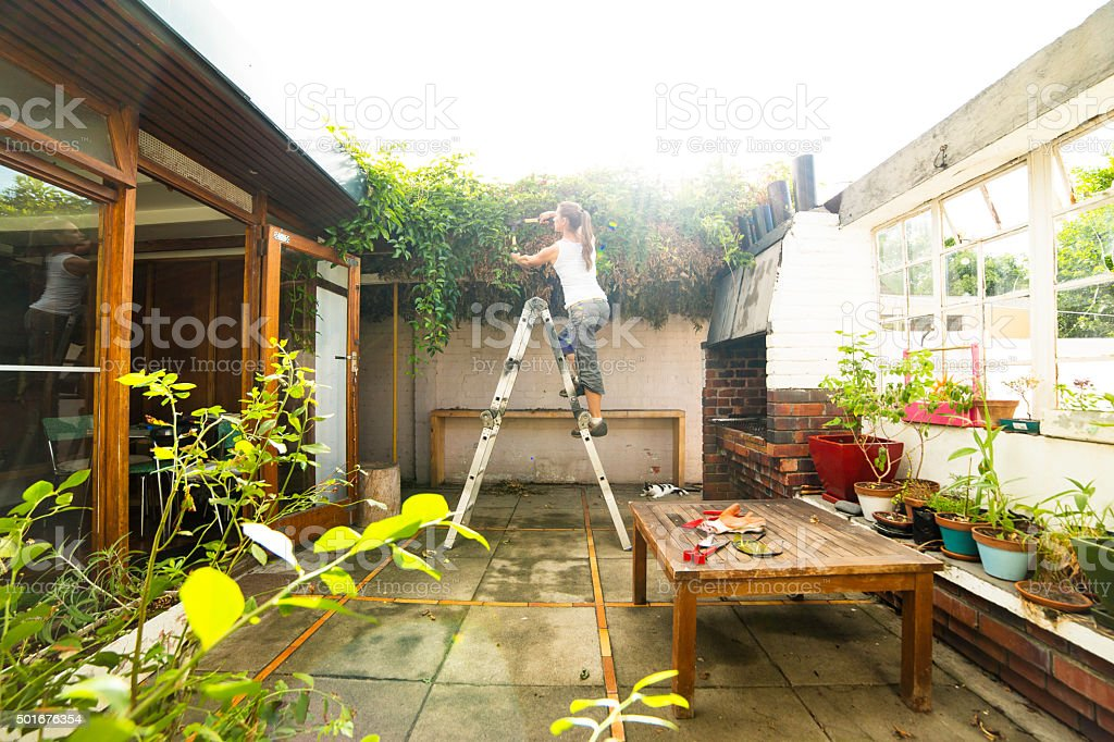 Woman Cuts Overgrown Creepers in Courtyard stock photo