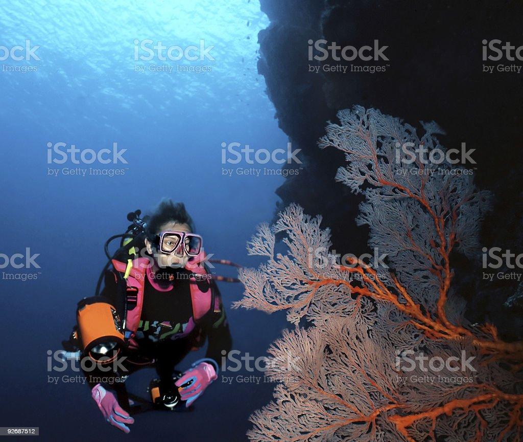 Femme de plongeur et Ventilateur de mer photo libre de droits