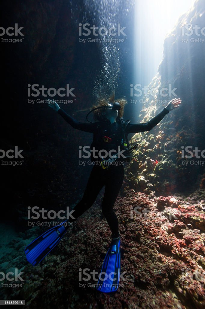 Woman diver under the water royalty-free stock photo