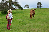 Woman, Dog and a Horse in the Countryside