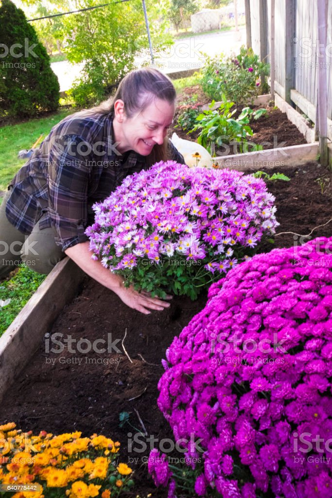 Woman Doing Fall Maintenance In Her Garden stock photo