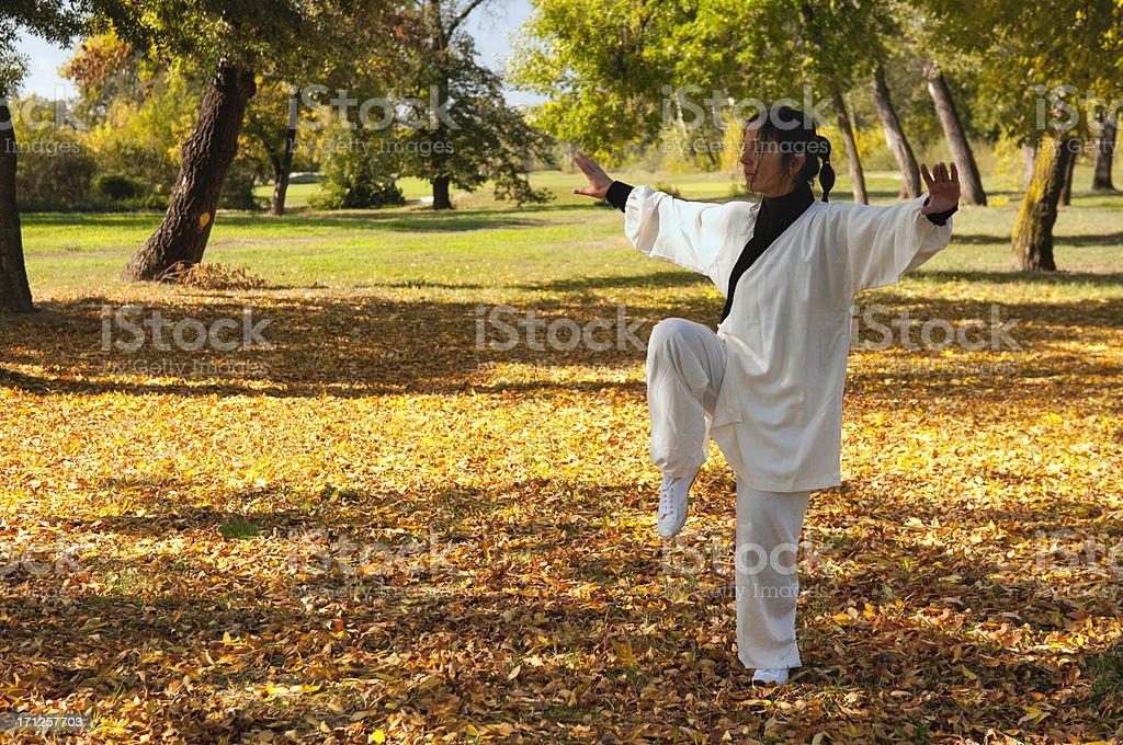 Woman doing Tai Chi stock photo