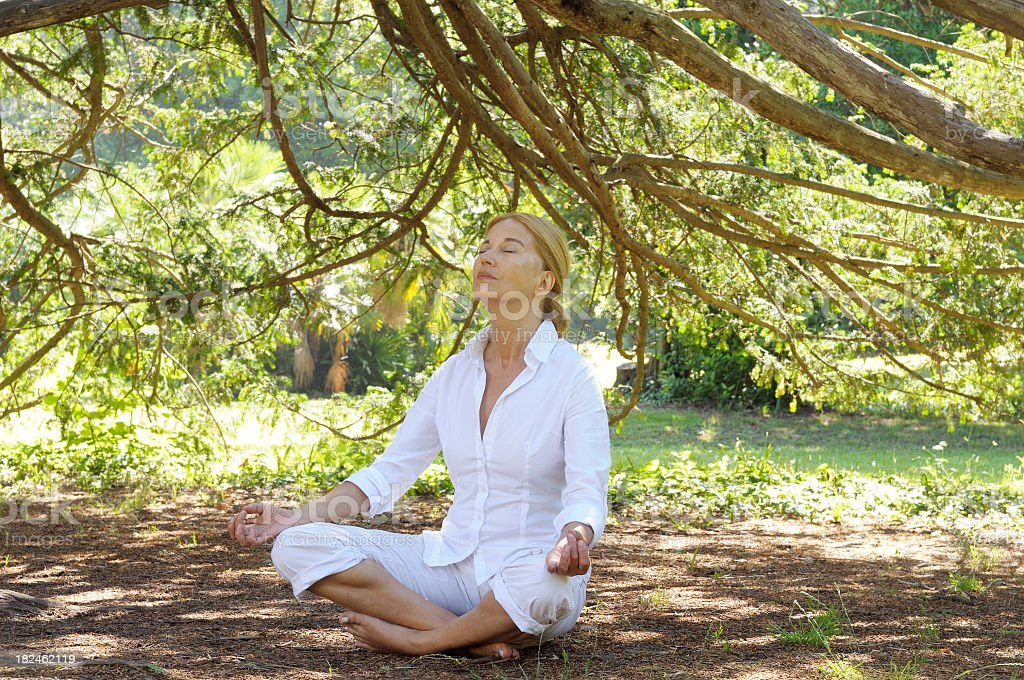 Woman Doing yoga Under a Tree royalty-free stock photo
