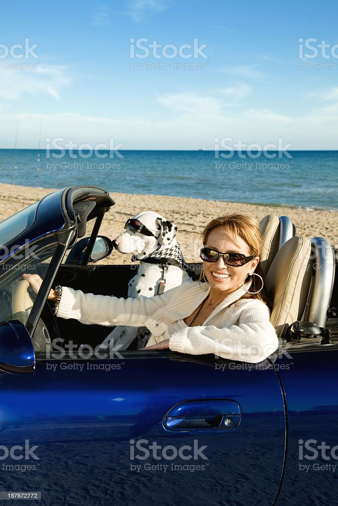 Woman driver and dog passenger stock photo