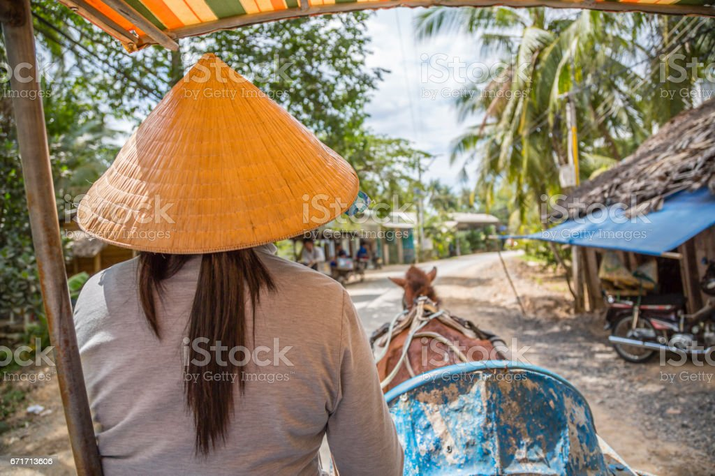 Woman driving a horse cart on country road, Vietnam stock photo