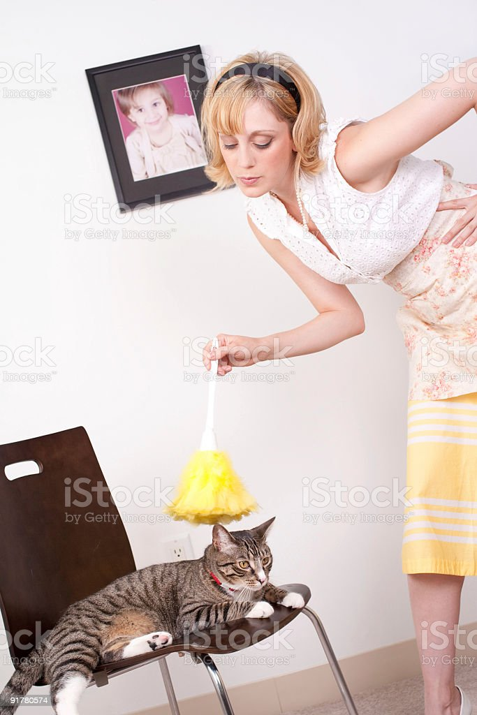 Woman Dusting Cat stock photo
