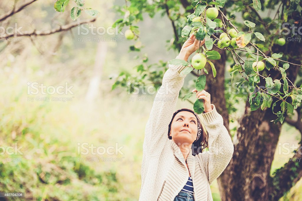 Woman Enjoying in her Garden stock photo