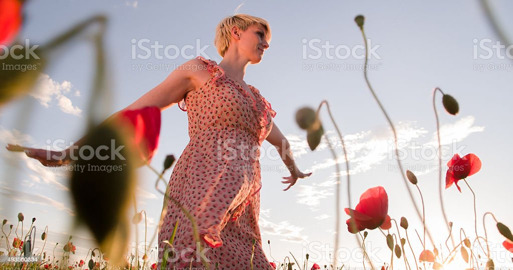 Woman Enjoying In The Poppy Field stock photo