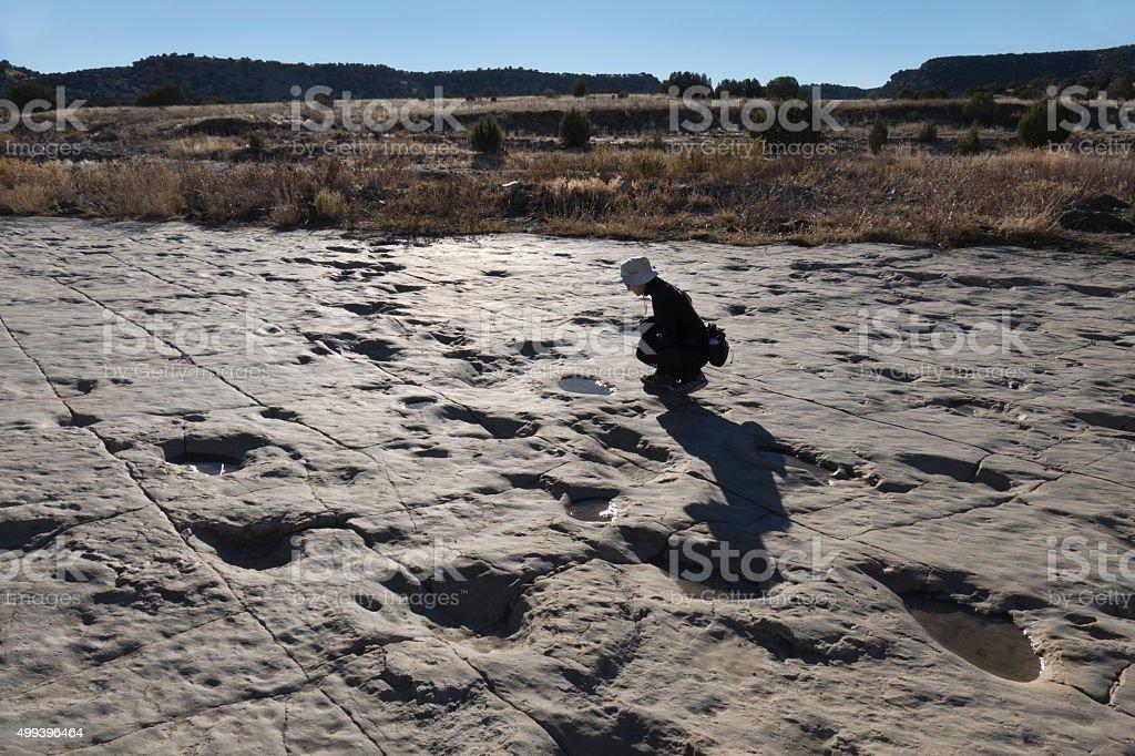 Woman explores newly uncovered dinosaur tracks Colorado stock photo