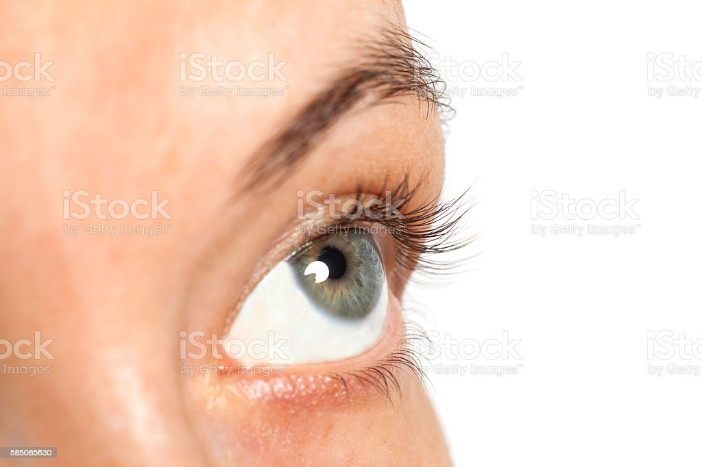 woman eye isolated on a white background stock photo