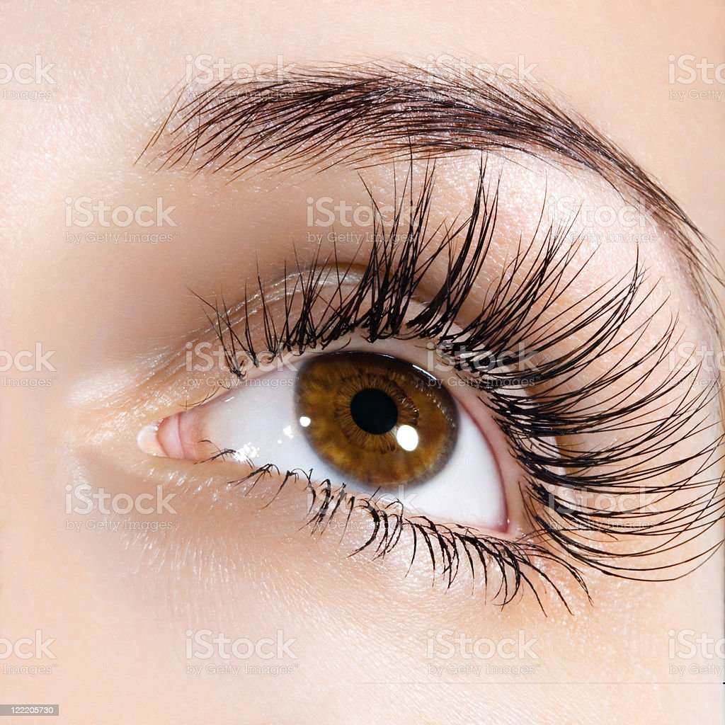woman eye with long eyelashes stock photo