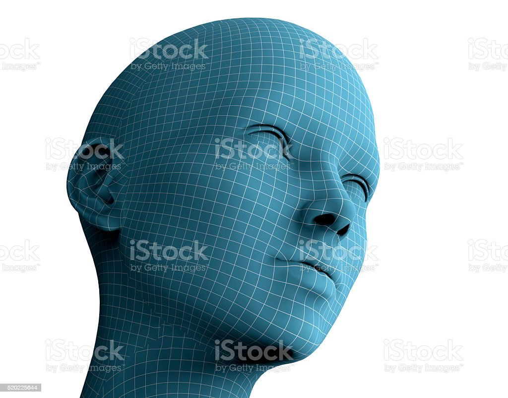 woman face in wireframe lines isolated on white.3D illustration stock photo