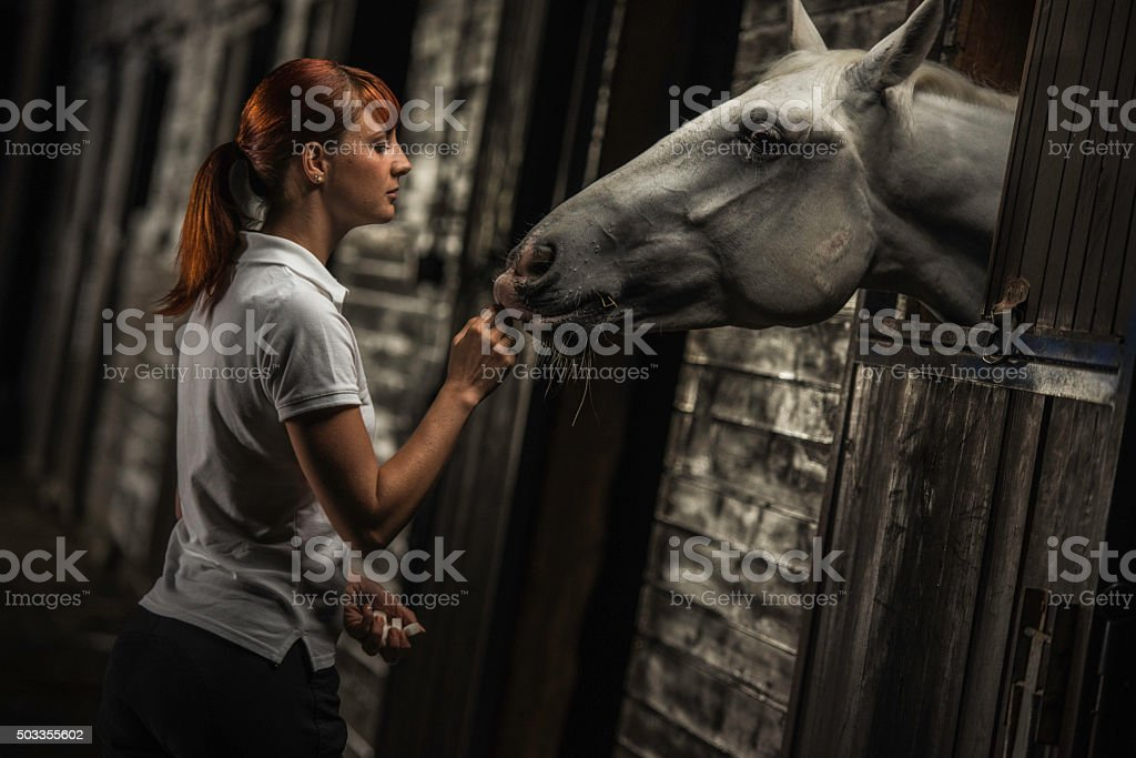 Woman feeding a horse in a stable at night stock photo