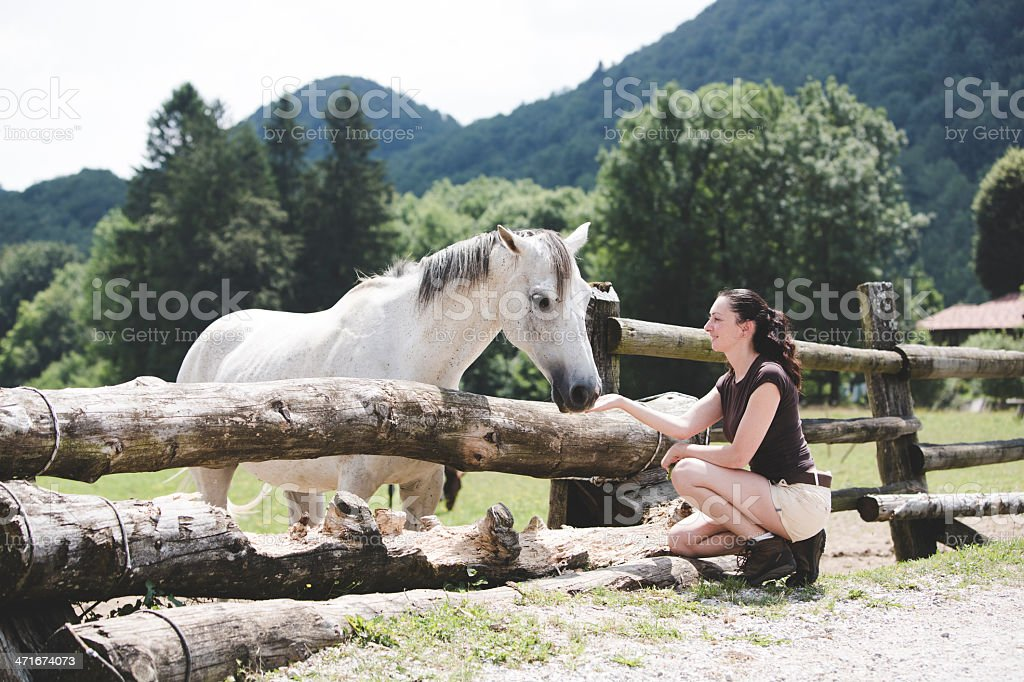Woman  feeding a white horse royalty-free stock photo