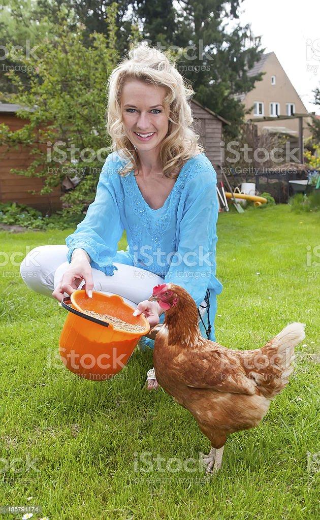woman feeding chicken royalty-free stock photo