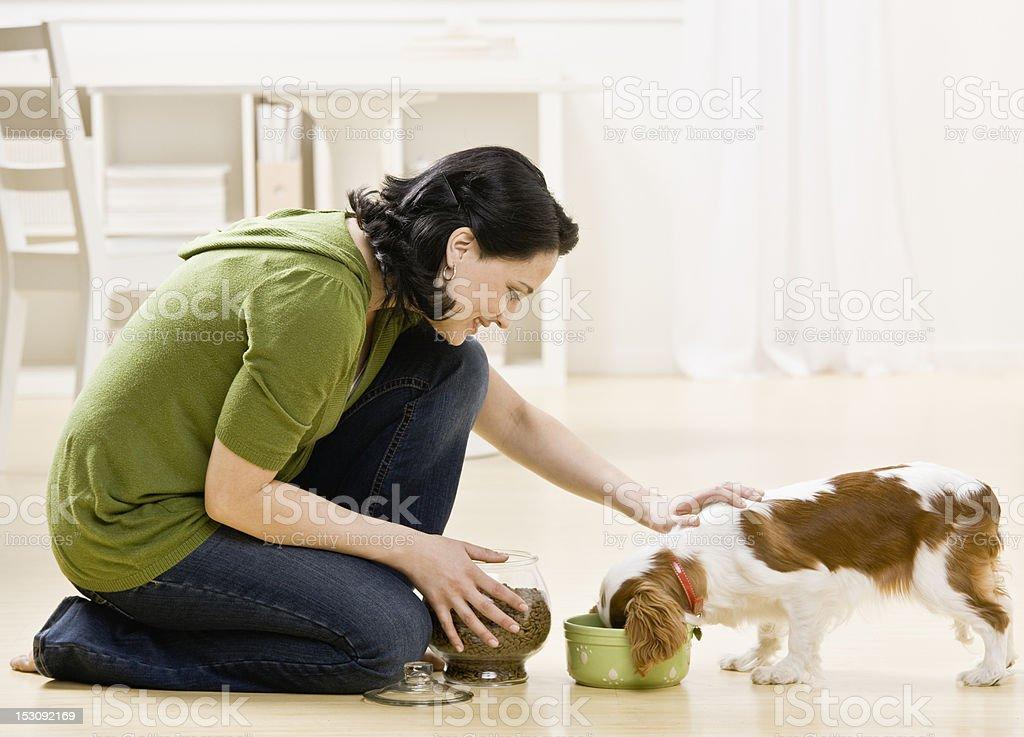 Woman Feeding Puppy stock photo