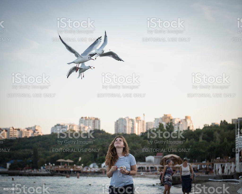 Woman feeding seagulls in Odessa, Ukraine stock photo