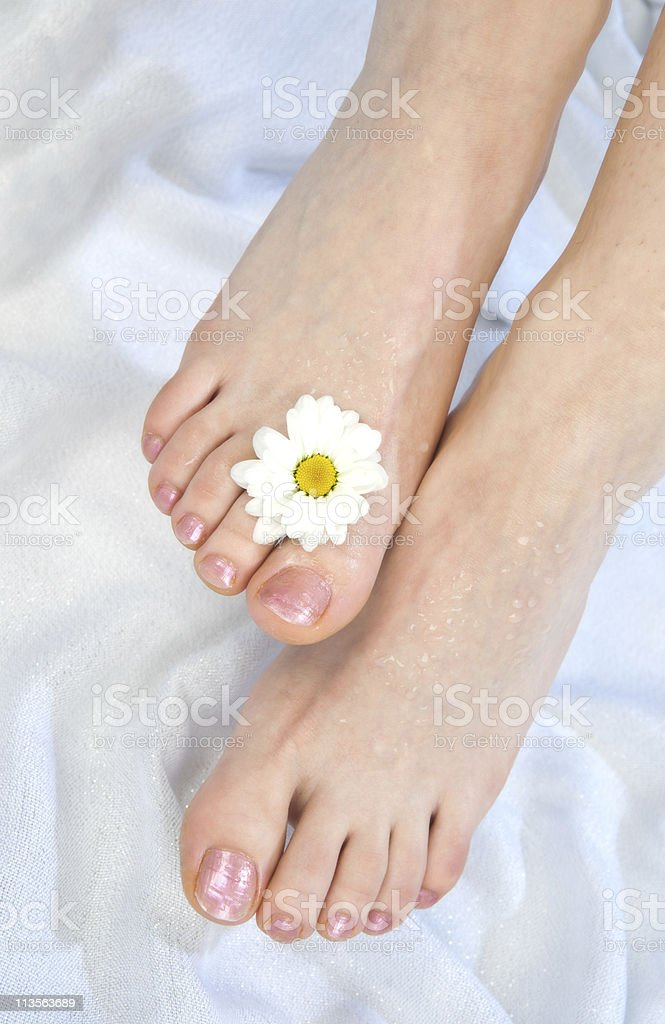 woman feet after pedicure royalty-free stock photo