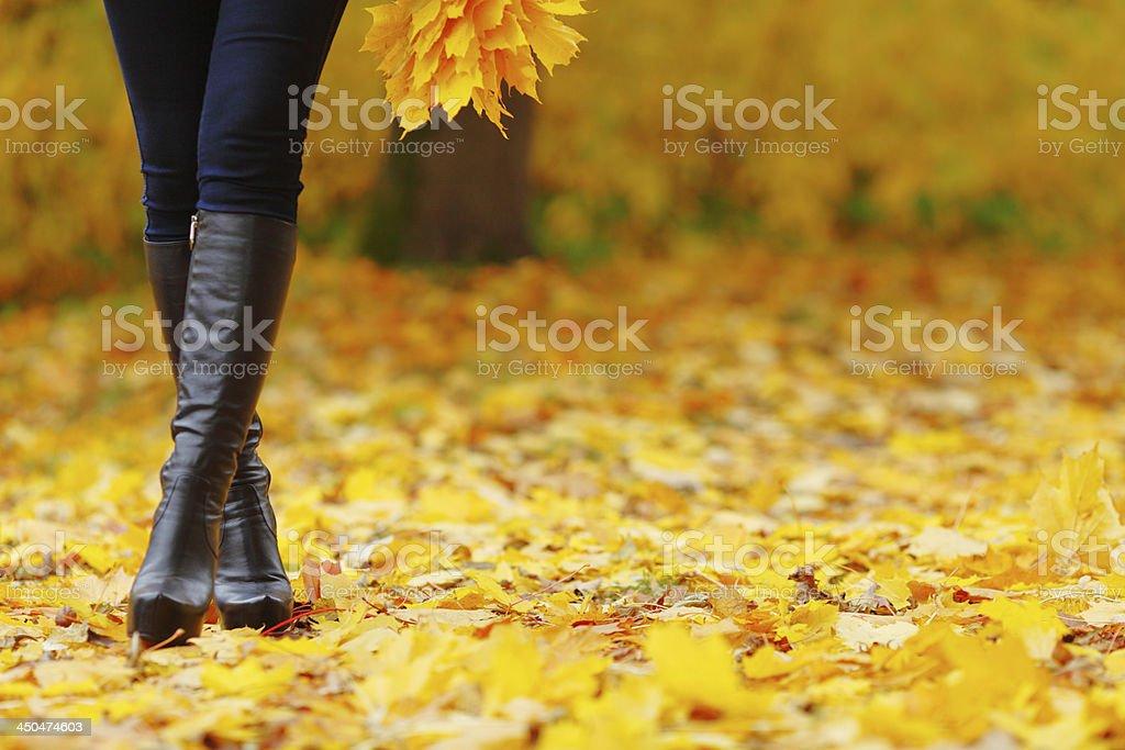 Woman feet  in autumn park stock photo