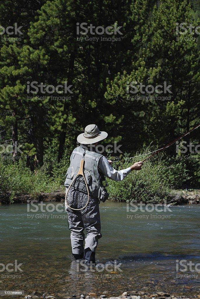 Woman Fly Fishing 6 royalty-free stock photo