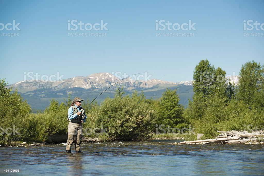 Woman Fly Fishing in Montana stock photo