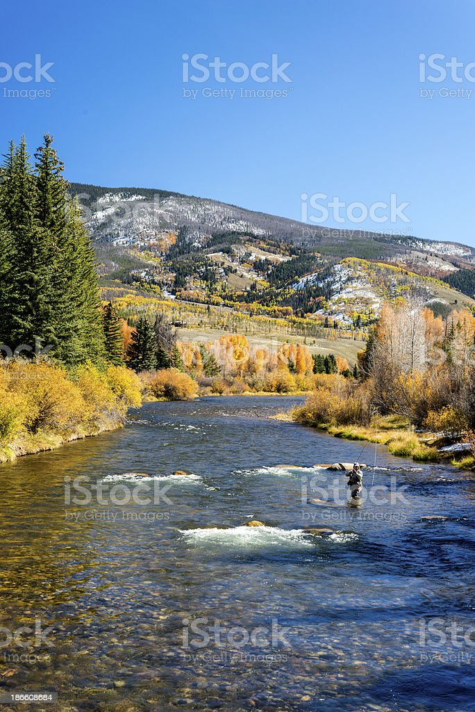 Woman Fly-Fishing on the Blue River in Colorado stock photo