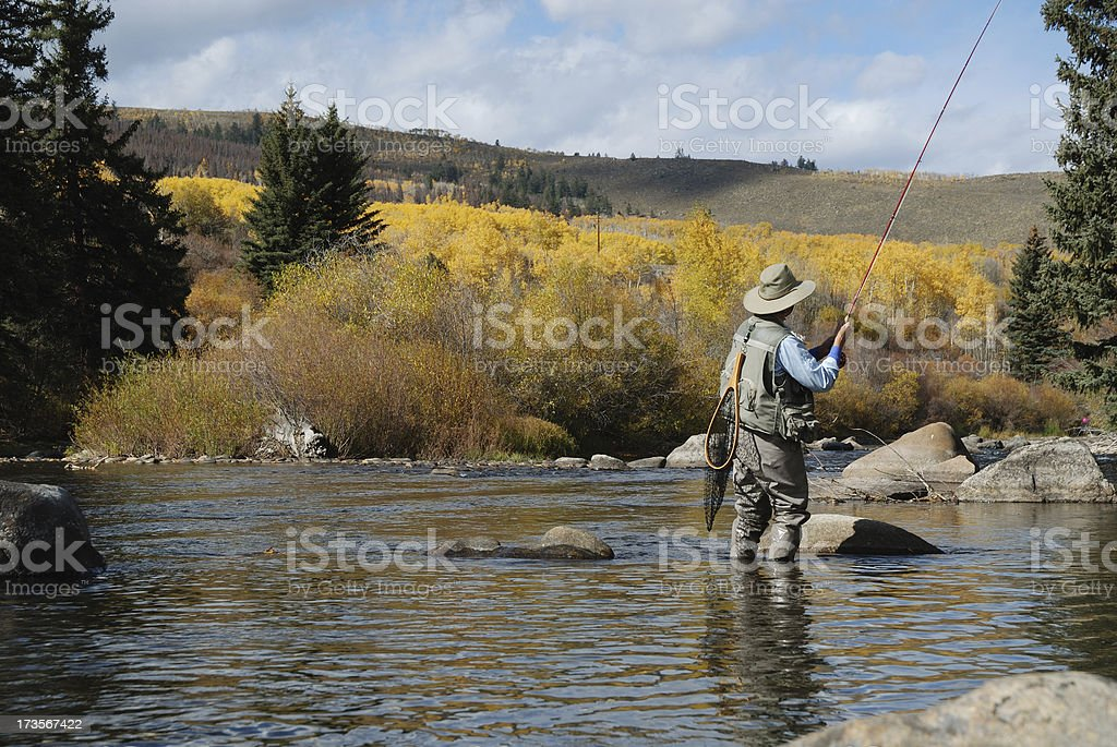 Woman Fly-Fishing royalty-free stock photo