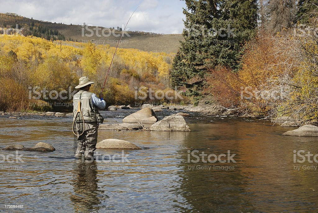 Woman Fly-Fishing royalty-free stock photo