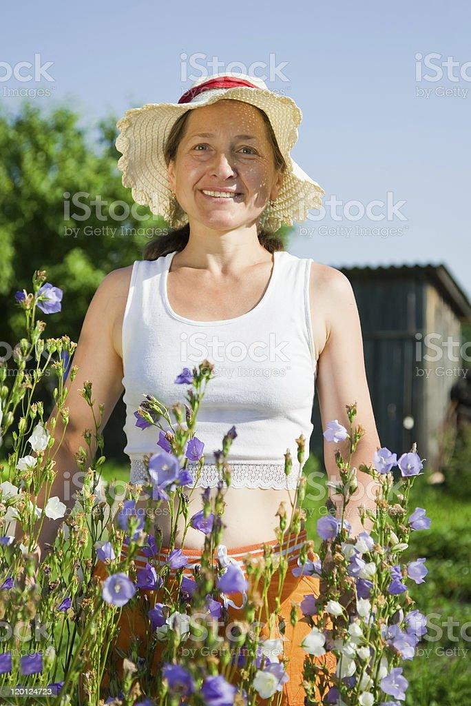 woman gardener with  bellflower royalty-free stock photo