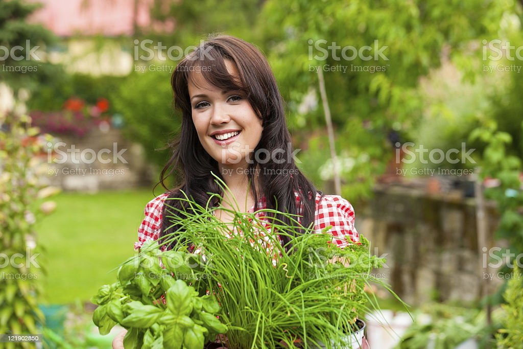 A woman gardening herbs in the summer in her garden royalty-free stock photo